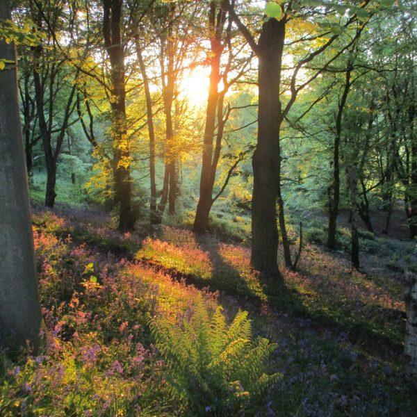 Brayton Sunrise image credit: Derek Cooper