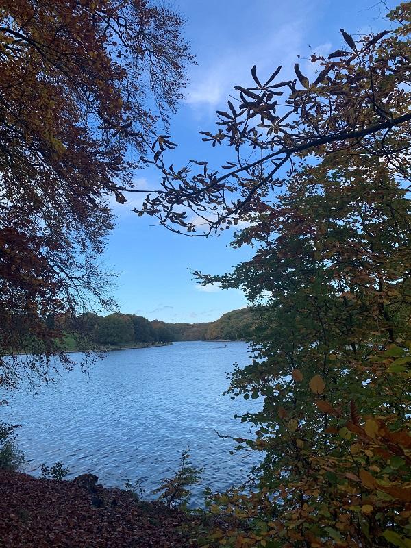 Roundhay Park Lake - credit Sunita Bharj, Visit Leeds